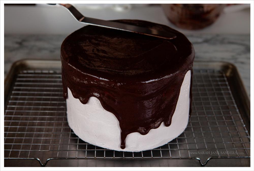 Sarah Jane Sanders c2014_Bravetart_Food Photography_Cranberry Cake_2.jpg