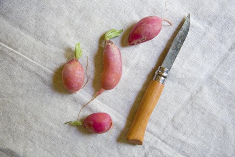 radish + knife