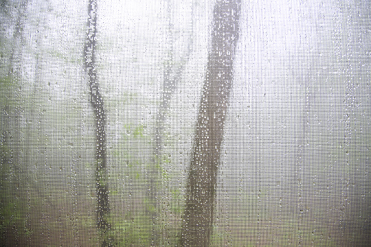 rain from a porch