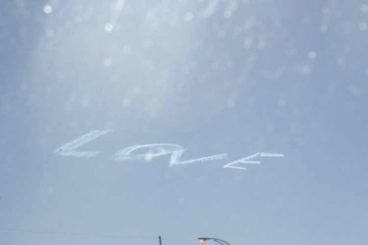 love . nola