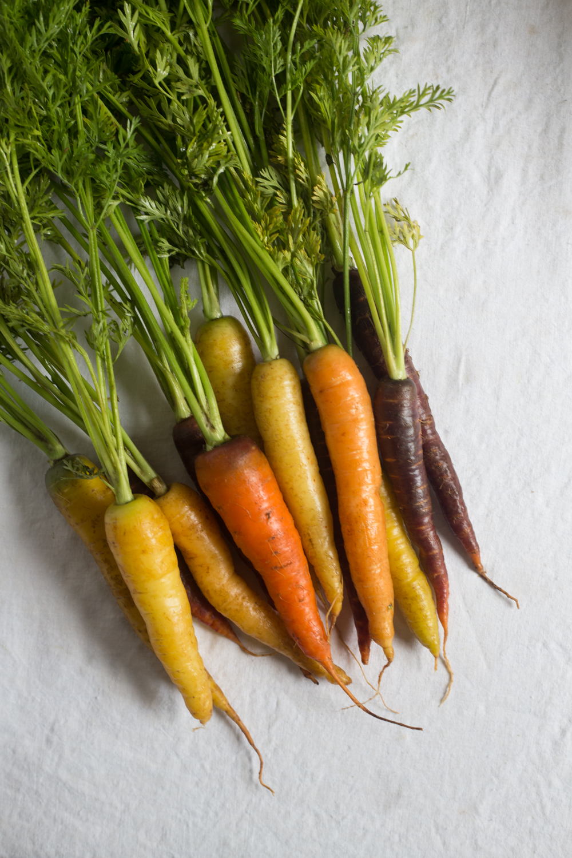 carrot with glaze-2.jpg