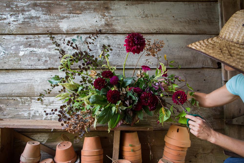 brown parcel press_moonflower_rinne allen-6219.jpg