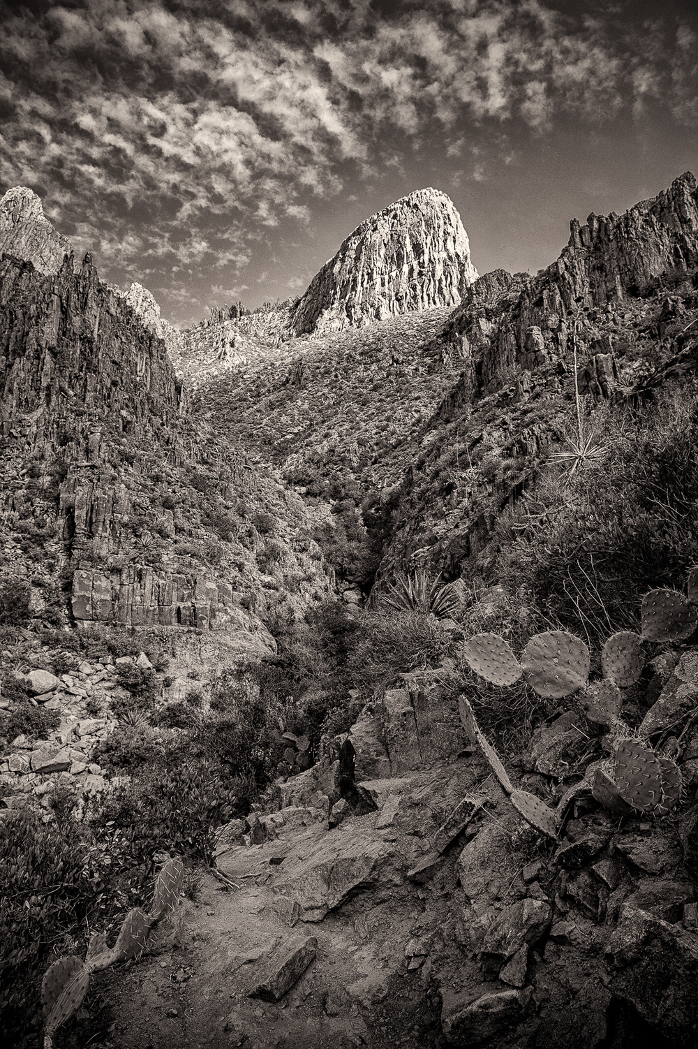 Heart of the Superstitions