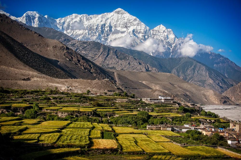 140603_Nepal '14_450.jpg