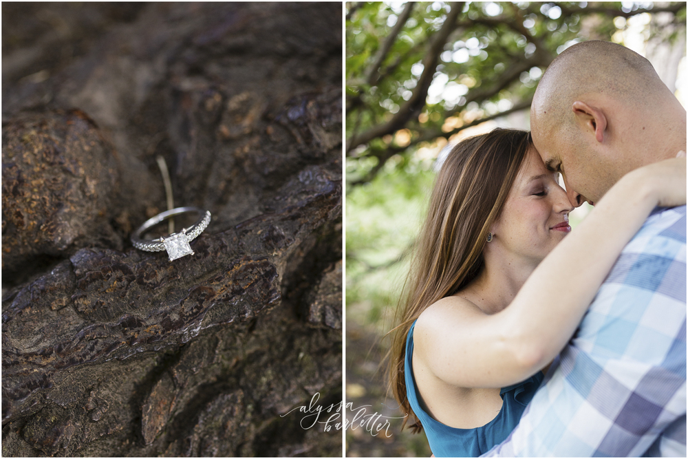 engagement photography kansas city loose park trees