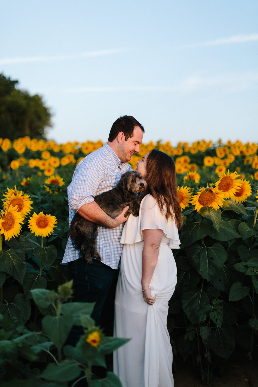 alyssa barletter photography sunflower field photos-4.jpg