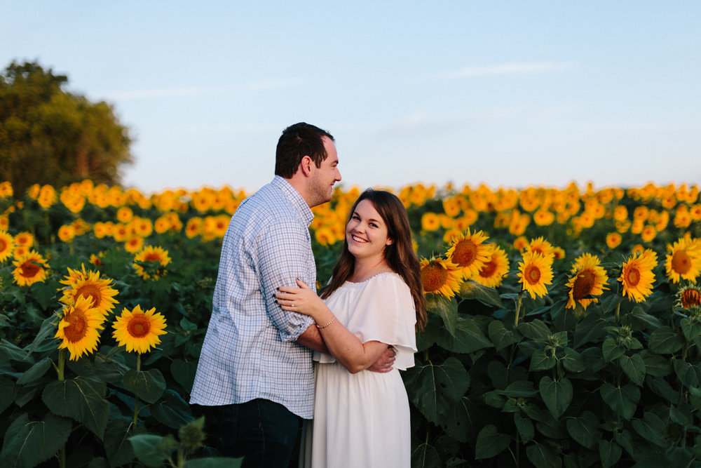 alyssa barletter photography sunflower field photos-6.jpg
