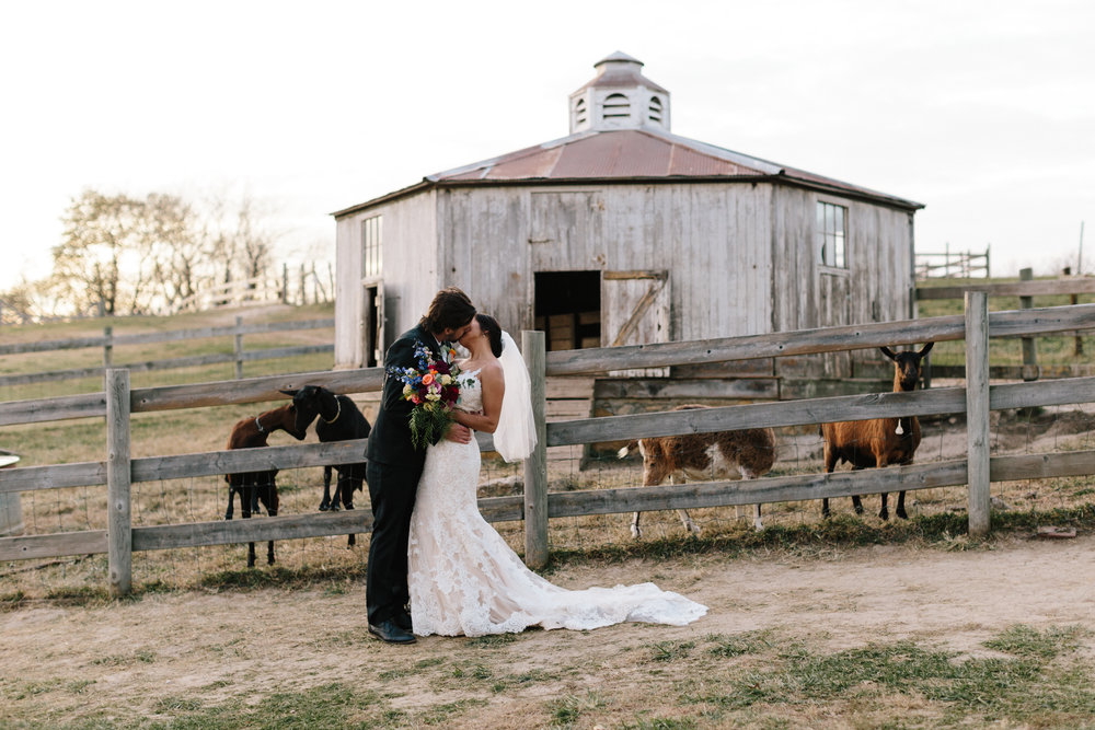 alyssa barletter photography weston red barn farm fall wedding marisa and kurtis-55.jpg