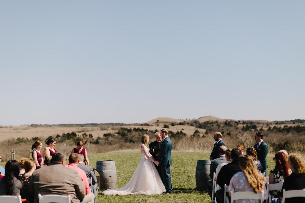 alyssa barletter photography manhattan kansas spring wedding liquid art winery-29.jpg