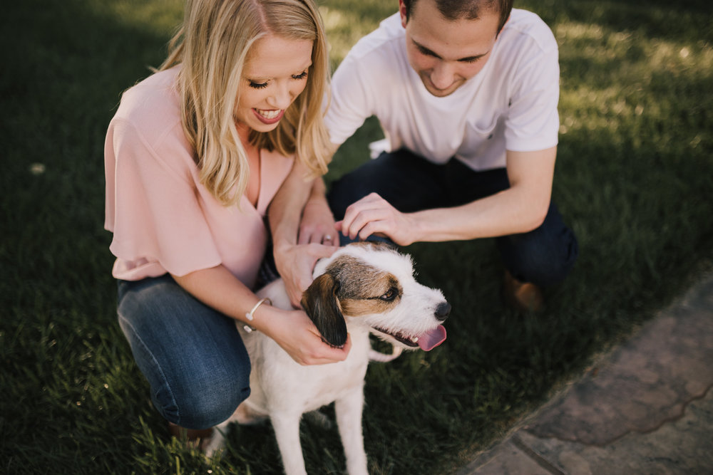 alyssa barletter photography nelson atkins art museum classic summer engagement session with dog-10.jpg