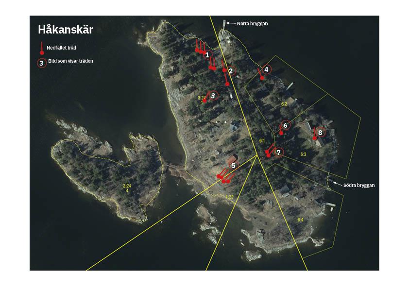 Kartskiss med träden utmärkta.jpg