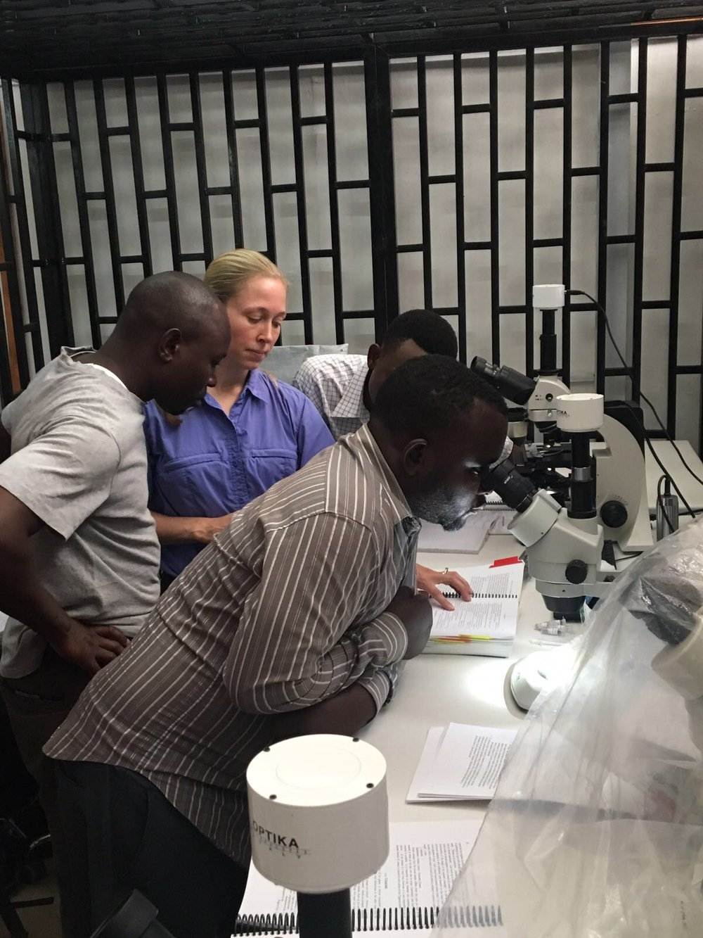 Microscope work, essential for mosquito ID.