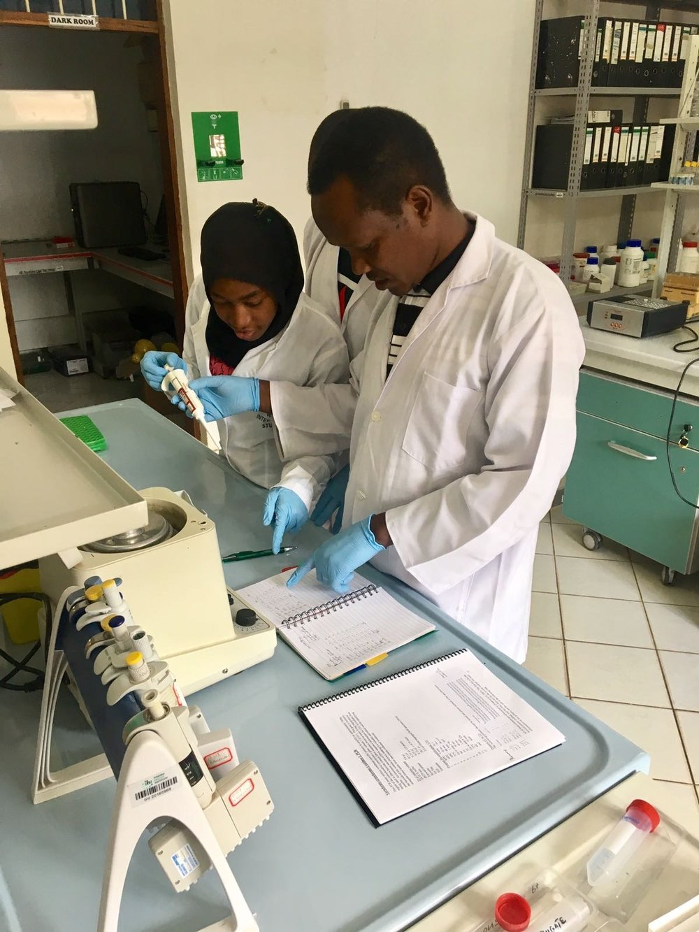 HALI's now expert vector-borne lab team starts PCR testing on mosquito blood meal.
