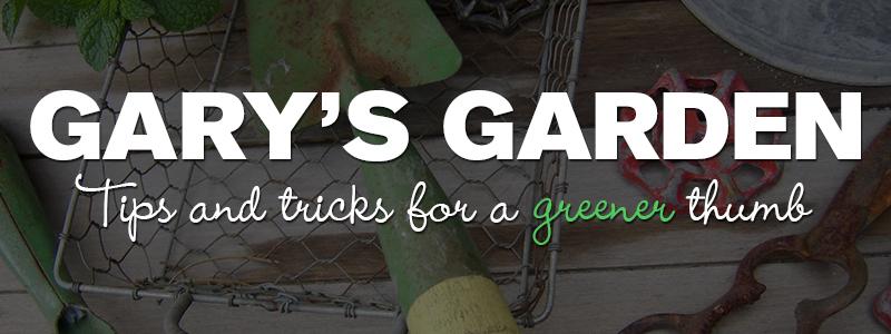 Garys-Garden-Header-01.jpg
