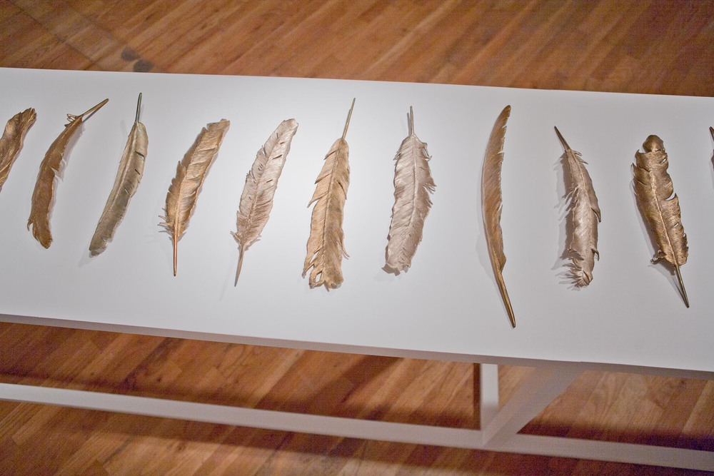 Brice-Brown-feathers-2012-08.jpg