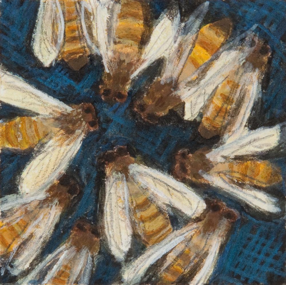 Bee Study II