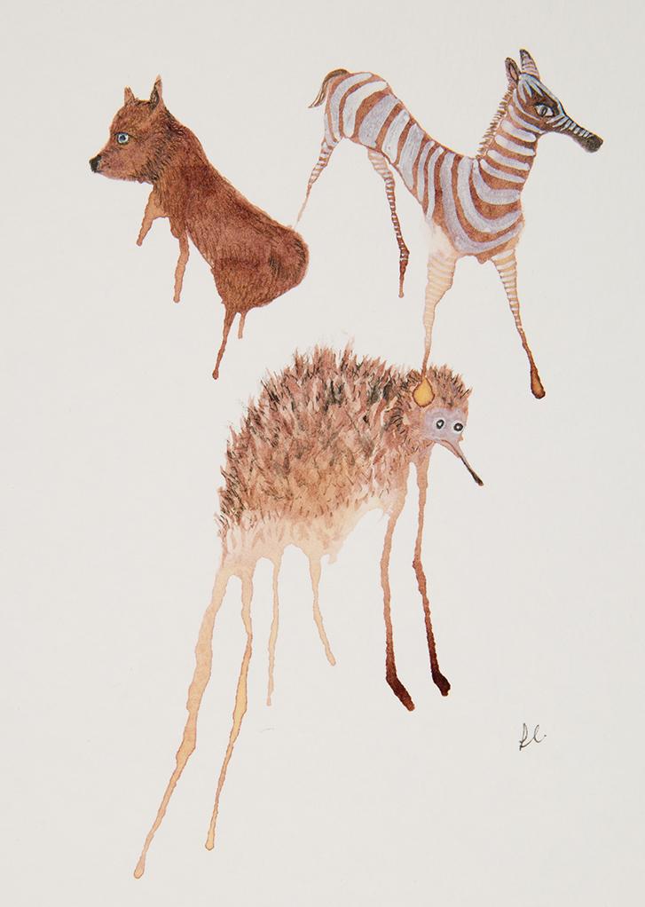 Mammal Menagerie