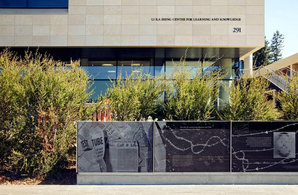 Stanford Medical_03.jpg