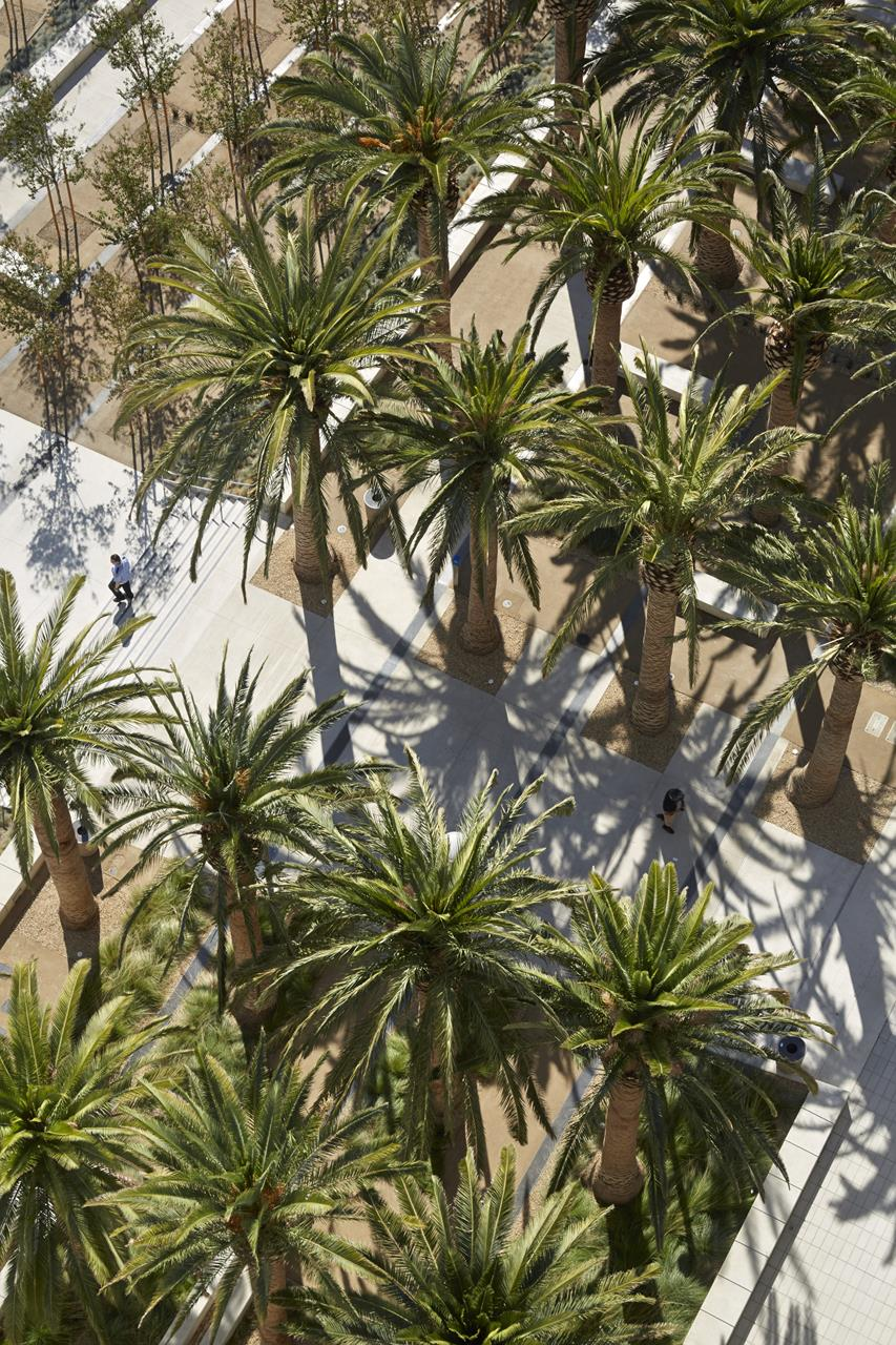 Palm Court from Air.jpg