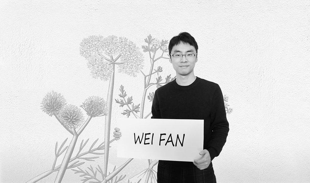 范炜 Wei Fan / 中国市场协调