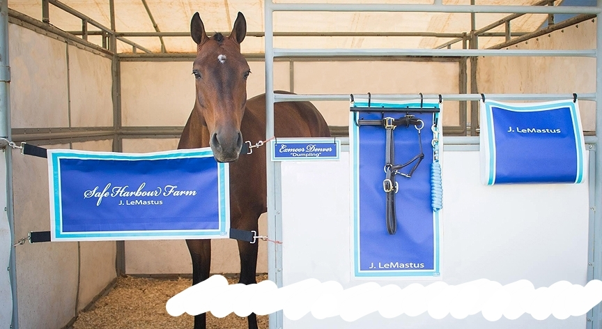 -    What does your DREAM stall look like?
