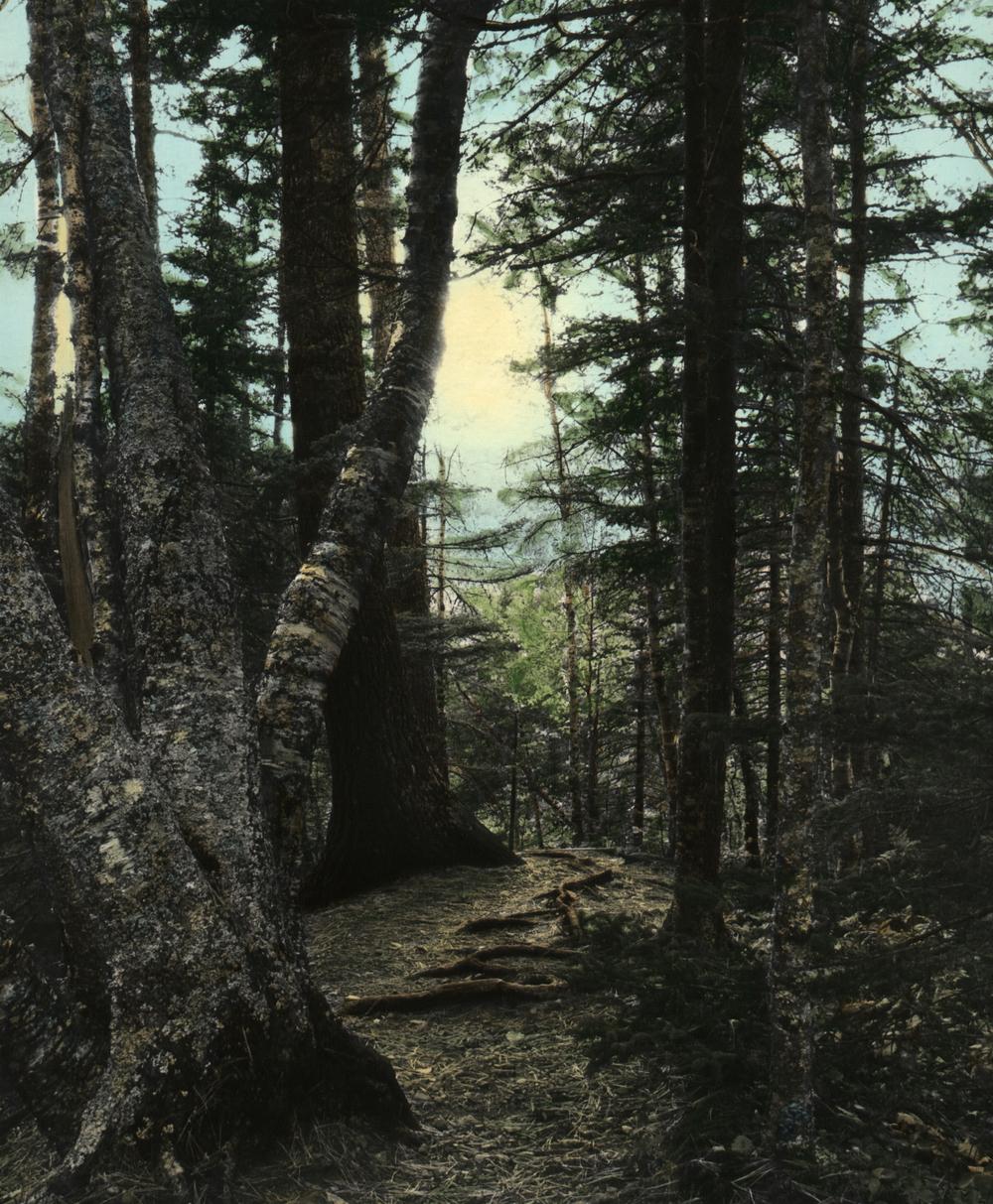 HCECascade Trail .jpg