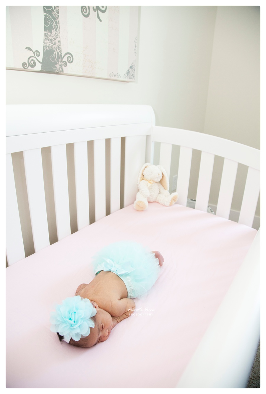 Charlotte_Newborn_photographer_Priscillagreenphotography004.jpg