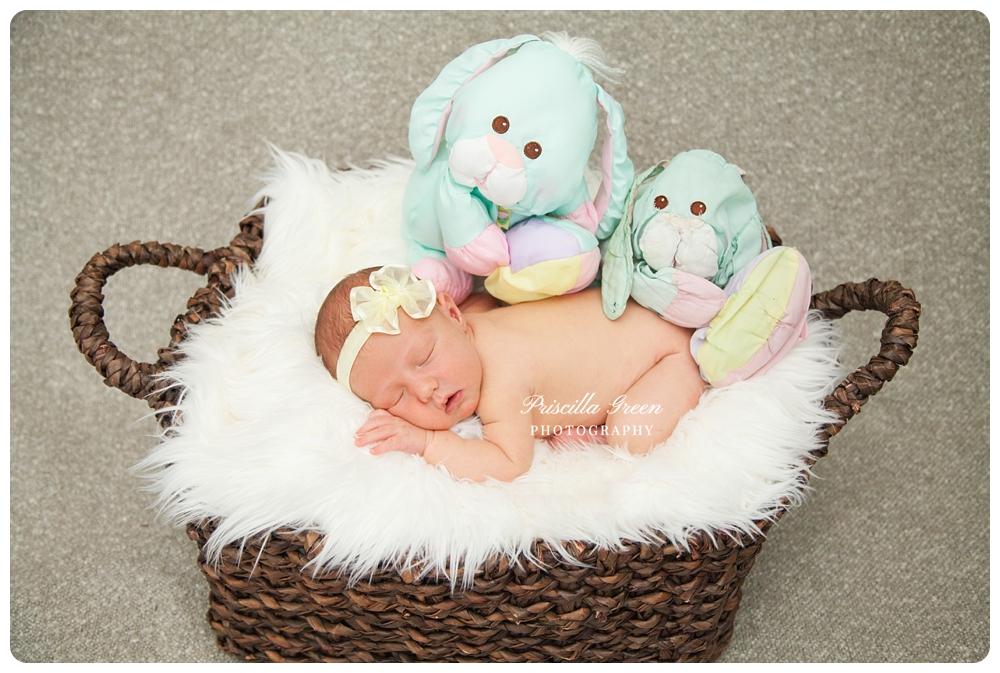 charlottephotographer_newborn_0001.jpg