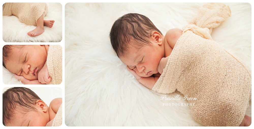 charlottephotographer_newborn_Priscillagreenphotography_0004.jpg