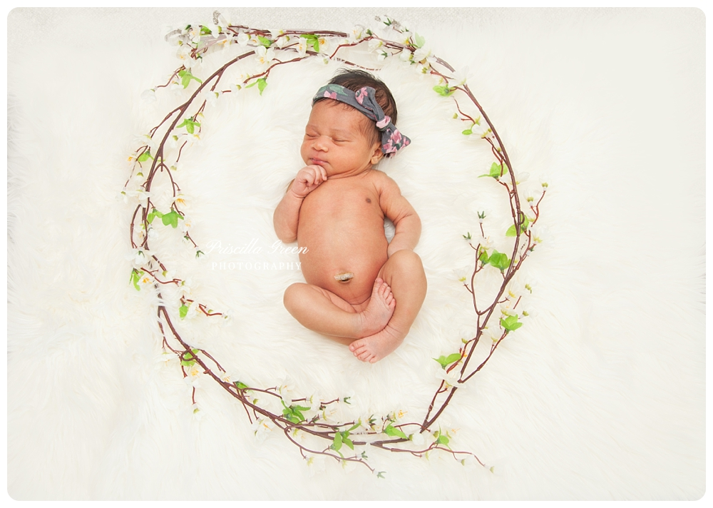 charlottephotographer_newborn_Priscillagreenphotography_0003.jpg