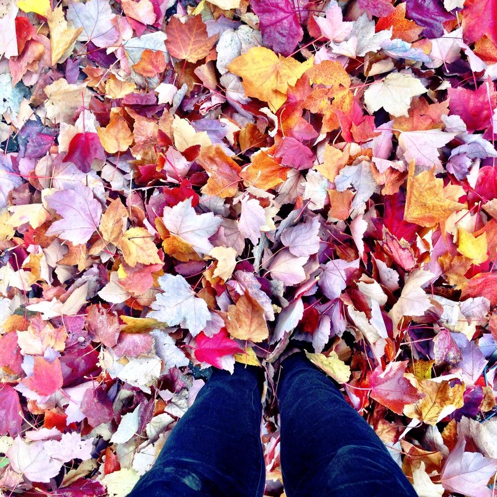 Photo Oct 26, 1 22 56 PM.jpg