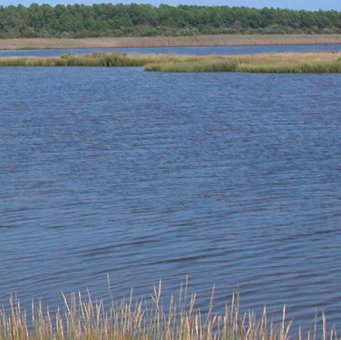 Outerbanks-water.JPG