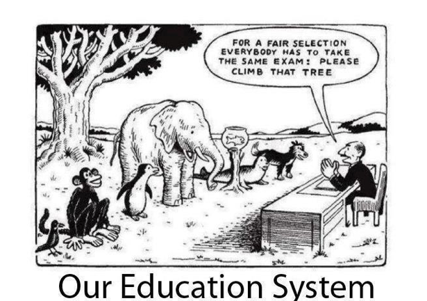Our Education System.png