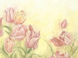 Medium Tulip-24x18-web.jpg