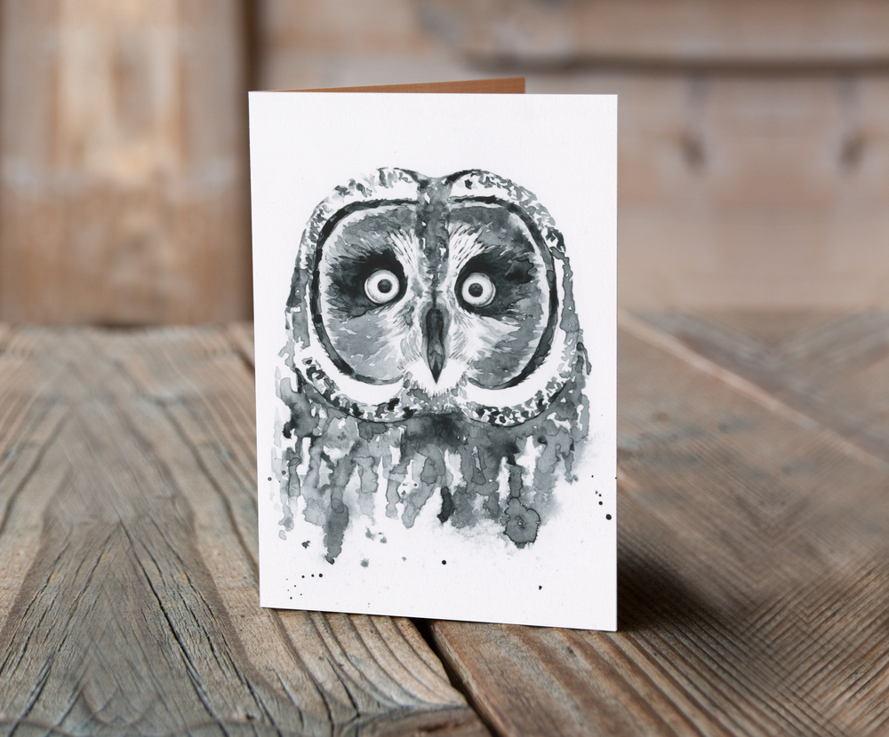greeting+card+owl.jpg