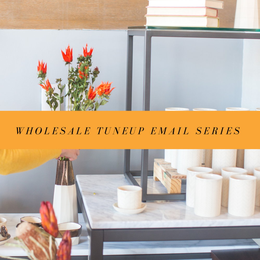 wholesale-free-email-series
