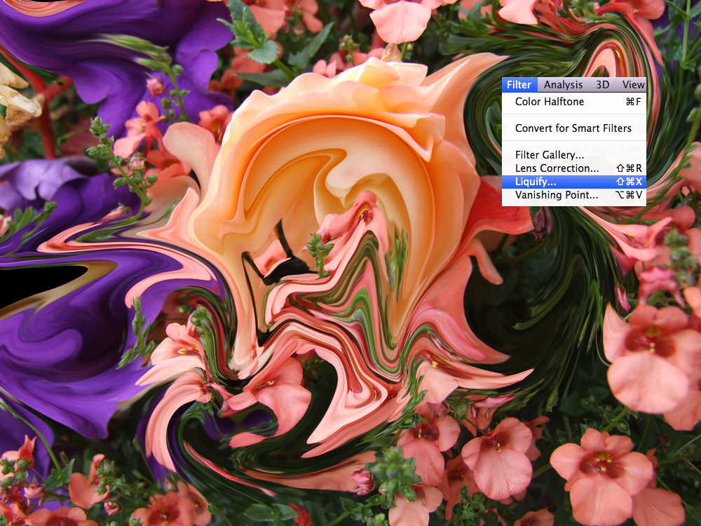 1. flower liquif.jpg