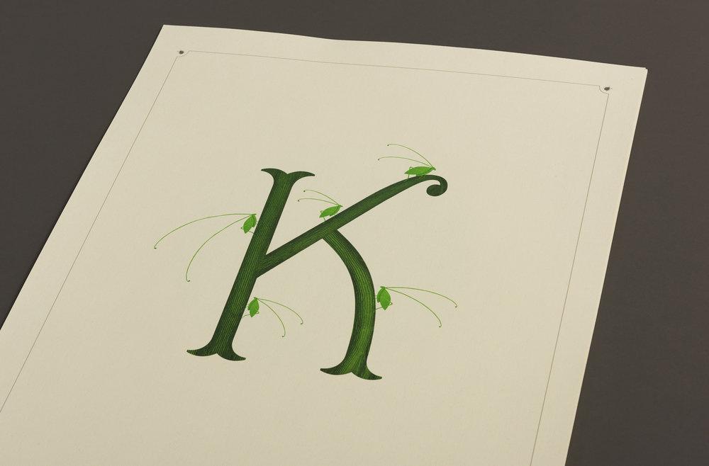 K-Detail.jpg