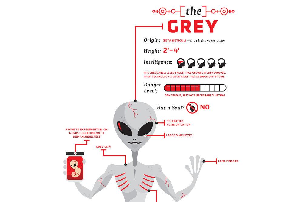 grey_detail.jpg