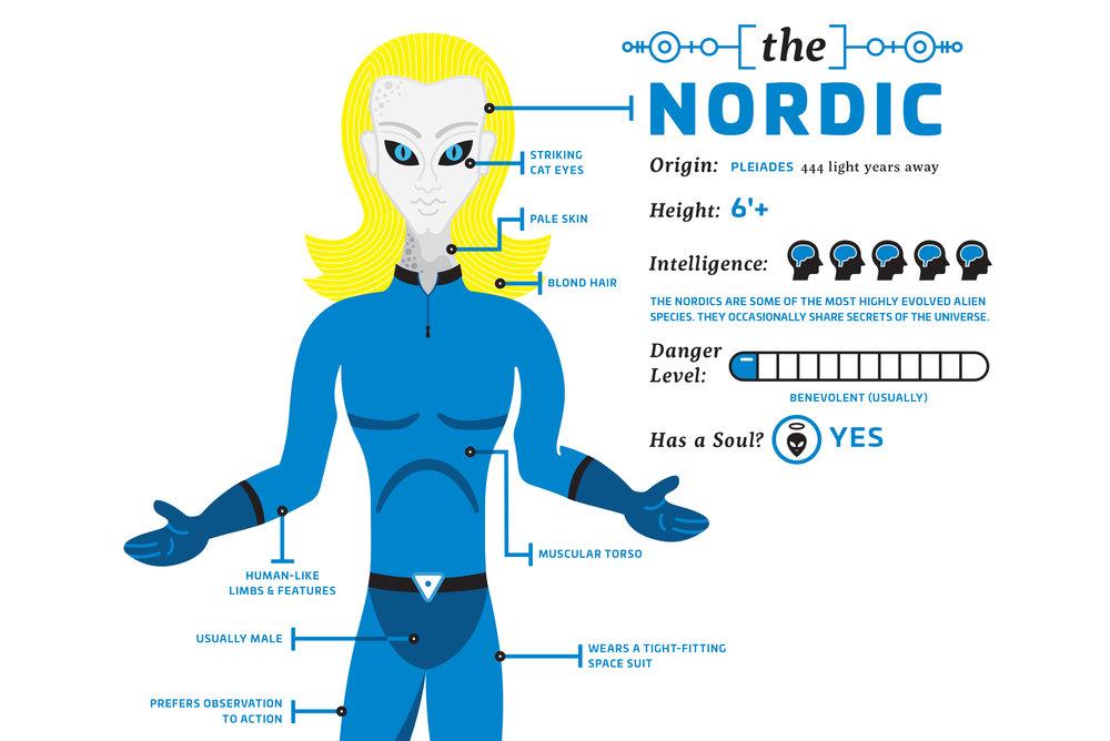 nordic_detail.jpg