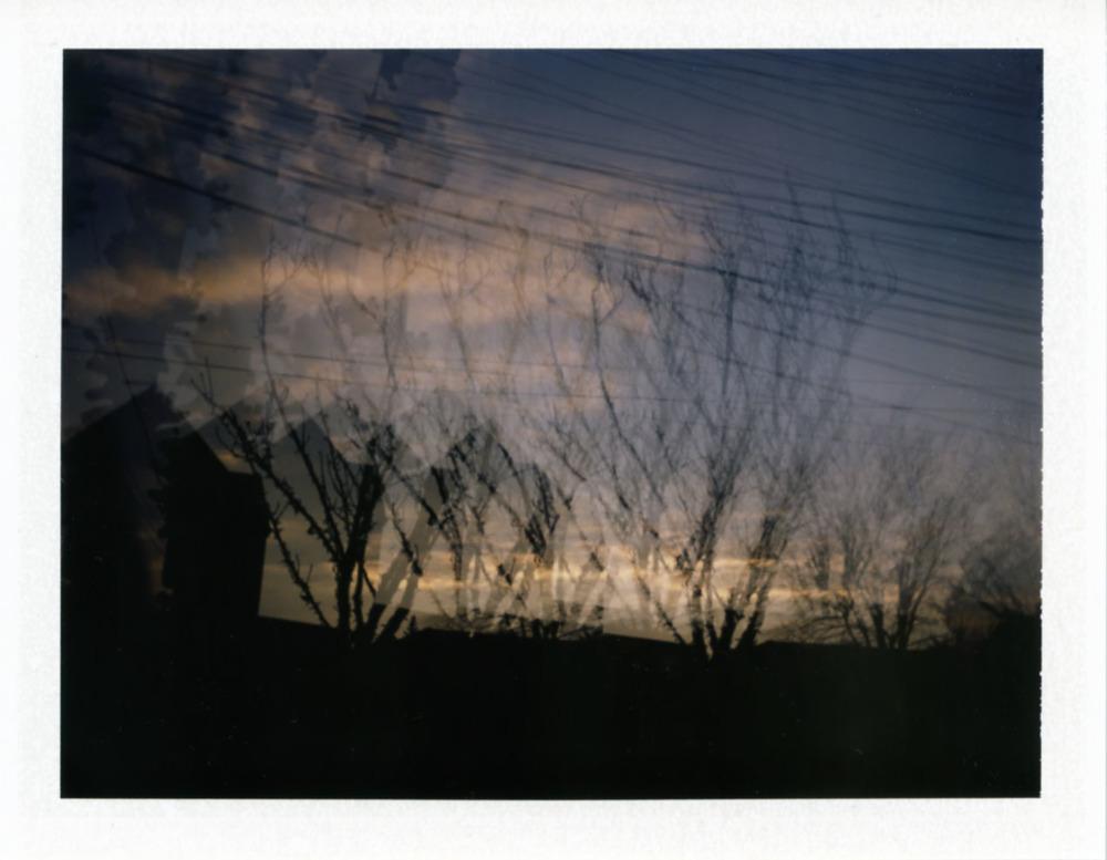 Polaroid149_web.jpg