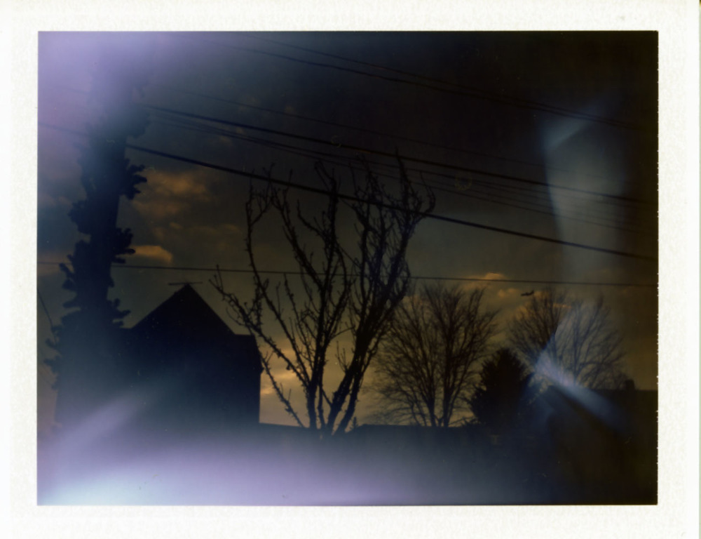 Polaroid150_web.jpg