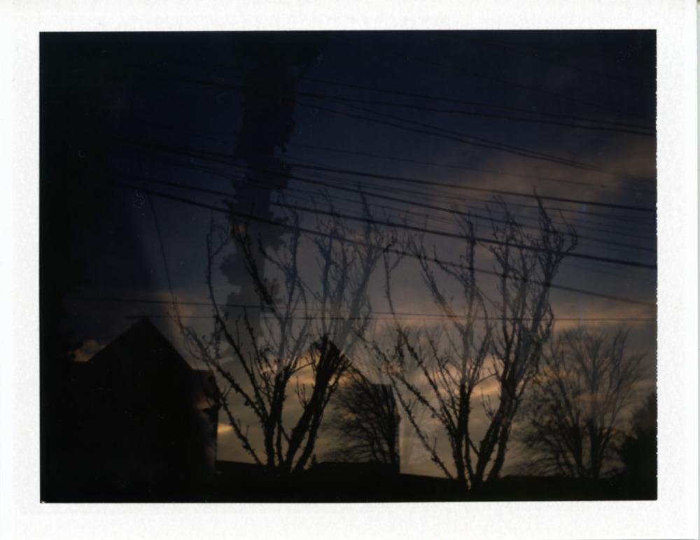 Polaroid151_web.jpg
