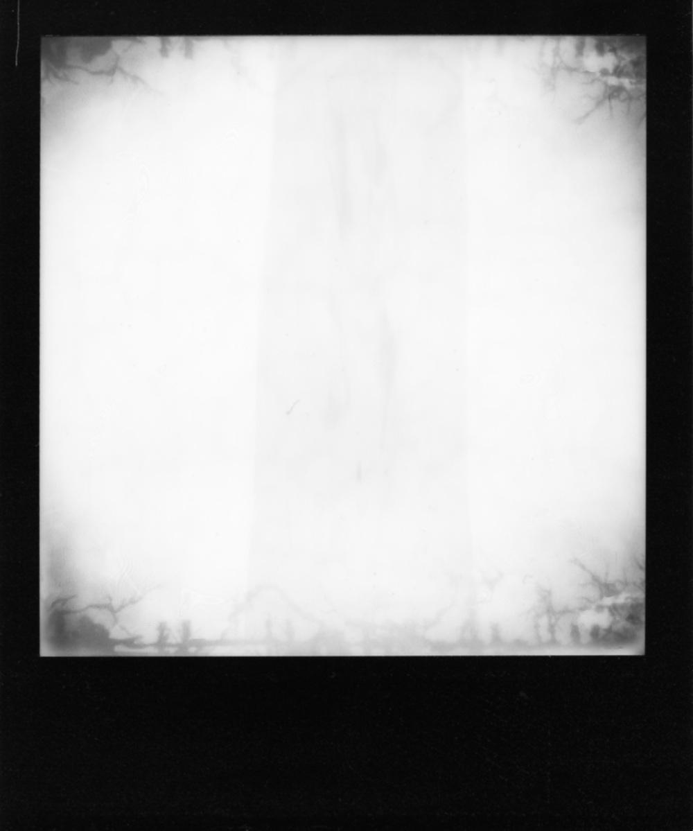 Polaroid194_web.jpg