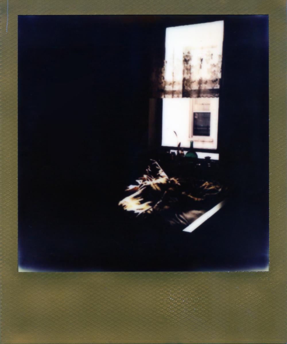 Polaroid200_web.jpg