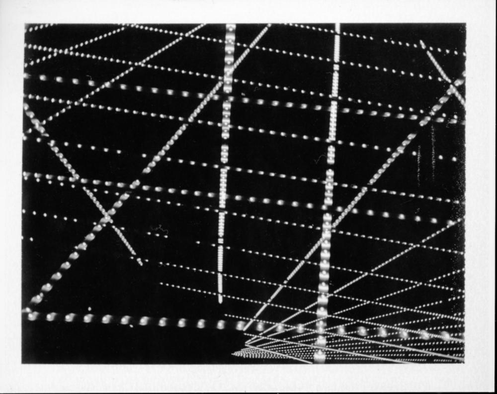 Polaroid211_flat.jpg