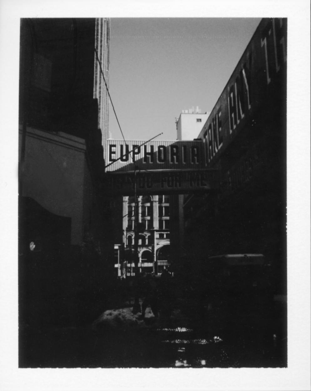 Polaroid214_flat.jpg