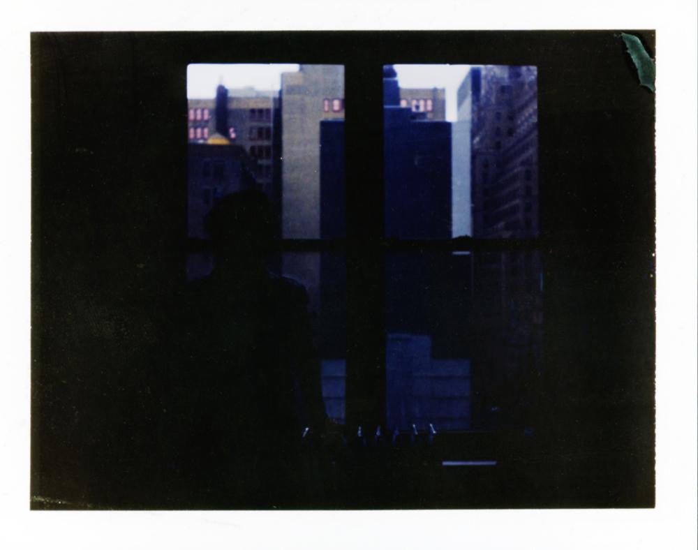 Polaroid220_flat.jpg
