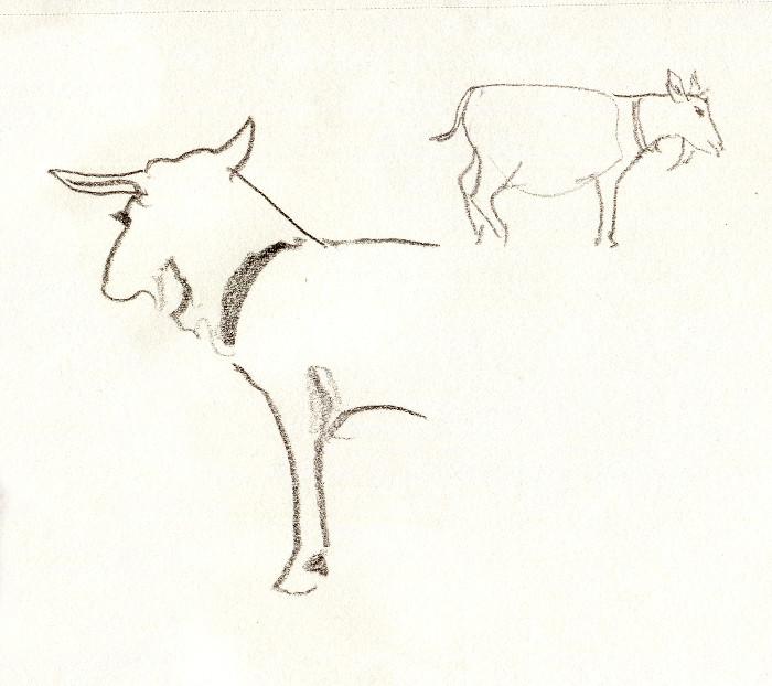 -goat135a.jpg