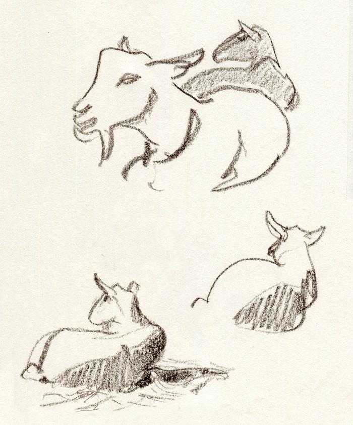 -goat138.jpg